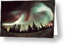 Aurora Borealis Greeting Card by Chris Madeley