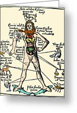 16th-century Medical Astrology Greeting Card by Cordelia Molloy