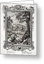 1731 Johann Scheuchzer Creation 6th Day Greeting Card by Paul D Stewart