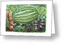 19 - Cypress Creek WMA - Watermelon Greeting Card by Rob Smith