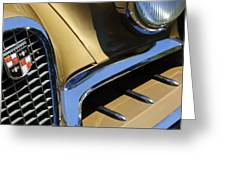 1957 Studebaker Golden Hawk Hardtop Grille Emblem Greeting Card by Jill Reger