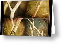 Branching Out Greeting Card by Bonnie Bruno