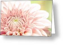 Dahlia Greeting Card by Martin Dzurjanik