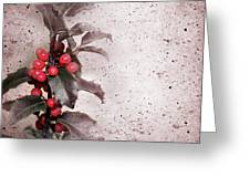 Holly Branch  Greeting Card by Carlos Caetano