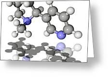 Nicotine Molecule Greeting Card by Laguna Design
