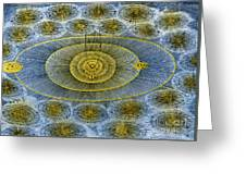 Plurality Of Worlds, Leonhard Euler Greeting Card by Science Source
