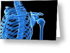 Shoulder Bones, Artwork Greeting Card by Sciepro