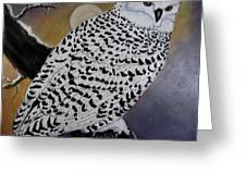 Snowy Owl And Moon Greeting Card by Sandra Maddox