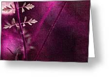 Wonderment Greeting Card by Bonnie Bruno