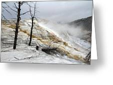Yellowstone Mammoth Hot Springs Greeting Card by Pierre Leclerc Photography