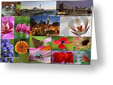 2012 Photography Artwork Highlights Greeting Card by Juergen Roth