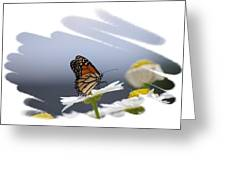 Butterfly Greeting Card by Gerald Kloss
