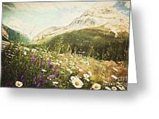 Field Of Daisies And Wild Flowers Greeting Card by Sandra Cunningham
