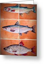 3  Fish Mural Greeting Card by Andrew Drozdowicz