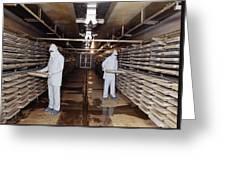Microbe Fermentation Unit Greeting Card by Volker Steger