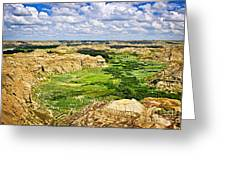 Badlands In Alberta Greeting Card by Elena Elisseeva