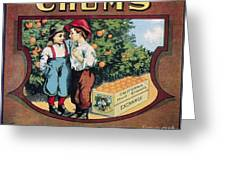 Crate Label, 20th Century Greeting Card by Granger