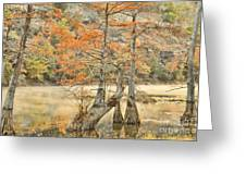 Cypress Trees In The Mist Greeting Card by Iris Greenwell