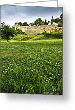 Kalemegdan Fortress In Belgrade Greeting Card by Elena Elisseeva