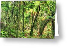 Native Bush Greeting Card by MotHaiBaPhoto Prints