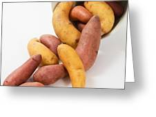 Potato Greeting Card by Photo Researchers, Inc.