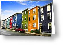 Colorful Houses In St. John's Newfoundland Greeting Card by Elena Elisseeva