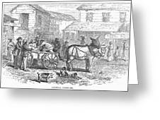 ARKANSAS: HOT SPRINGS, 1878 Greeting Card by Granger
