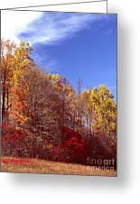 Patoka Lake - Indiana Greeting Card by Jack R Brock