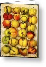 Apples Greeting Card by Bernard Jaubert
