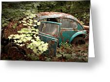 A '65 Bug In The Overgrowth Greeting Card by Michael David Sorensen