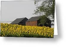 A Beautiful Country Setting In Ct Greeting Card by Kim Galluzzo Wozniak