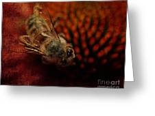 a Bee Greeting Card by Billie-Jo Miller