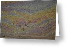 A Close-up Of A Parking Lot Oil Slick Greeting Card by Joel Sartore