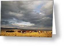 A Cloud-filled Sky Over A Yakima Valley Greeting Card by Sisse Brimberg