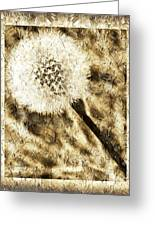 A Dandy Glow Greeting Card by Andee Design
