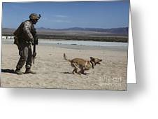 A Dog Handler Conducts Improvised Greeting Card by Stocktrek Images
