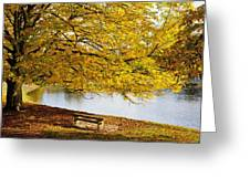 A Large Tree And Bench Along The Water Greeting Card by John Short