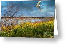 A Moment In Time In The Journey Of The Great White Egret . 7d12643 Greeting Card by Wingsdomain Art and Photography