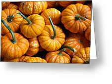 A Peck Of Pumpkins Greeting Card by Kami McKeon