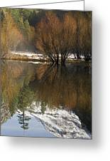 A Reflection Of Fall Trees In Mirror Greeting Card by Rich Reid