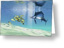 A Sailfish Hunts Prey On A Sandy Reef Greeting Card by Corey Ford