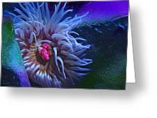 A Sea Anemone Greeting Card by Natalya Shvetsky