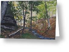 A Walk In The Woods Greeting Card by Vicky Path