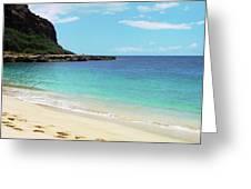 A Walk On The Beach Greeting Card by Sally Stevens