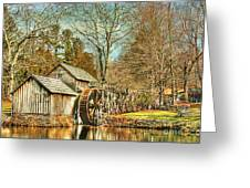 A Winters Day  Greeting Card by Darren Fisher