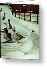 A Winter's Walk Greeting Card by Sheila Kinsey