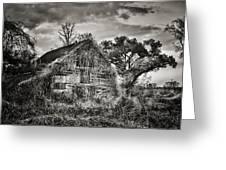 Abandoned Barn 2 Greeting Card by Brenda Bryant