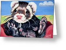 Adorable Ferret Greeting Card by Phyllis Kaltenbach