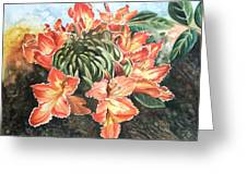 African Tulip Greeting Card by Karen Casciani