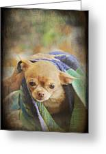 After The Bath Greeting Card by Laurie Search